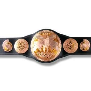 WWE 2010 Unified Tag Team Commemorative Belt: Everything