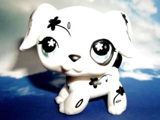 Littlest Pet Shop Retired Flower Dalmation Nook Dog #469