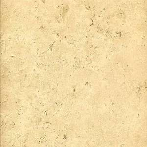 Azuvi Celtia 12 x 12 Rectified Crema Ceramic Tile: Home