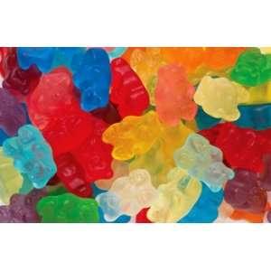 Assorted Gourmet Gummi Bears 5 LBS Grocery & Gourmet Food