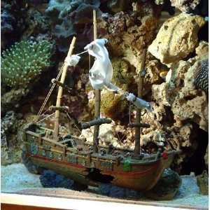 Aqua Ornament   SPOT ENGLISH WHALER FAB SAL XL: Pet
