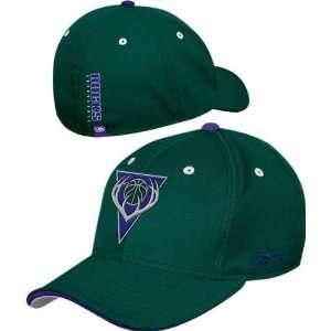 Milwaukee Bucks Youth Official Team Flex Fit Hat Sports