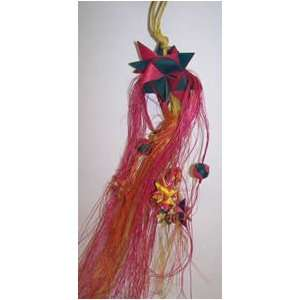 Planet Pleasures Parrot Pinatas Shooting Star Large 14in