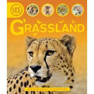 Life Cycles: Grassland (9780753466926): Sean Callery