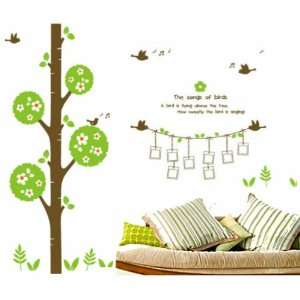 Removable Decal Sticker  Flower Tree with Singing Birds & Photo Frames