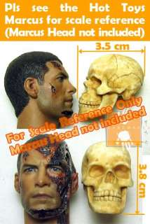 Toys Bloody Skull Head w/ movable jaw & bend able backbone