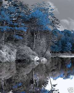 Black & White Blue Trees Lake Home Decor Wall Art Matted Picture