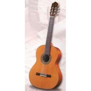 Antonio Sanchez 3000 Spanish Classical Guitar Musical