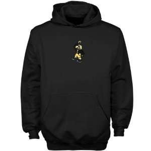 Iowa Hawkeyes Youth Black Hawkeyes Logo Hoody: Sports