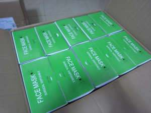 100 X Medical disposable Ear_loop Face Surgical Mask