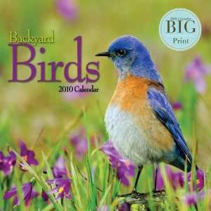 Backyard Birds Big Print 2010 Wall Calendar Office
