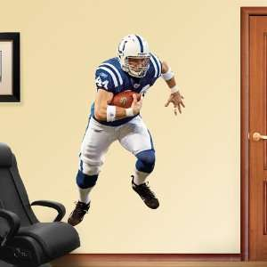 NFL Dallas Clark Vinyl Wall Graphic Decal Sticker Poster