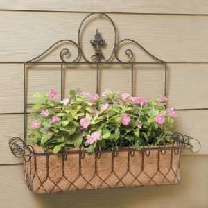 Wrought Iron Square French Wall Basket Planters with Coco
